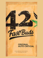 Fast Buds Seeds Original Line - Auto Critical Autoflowering Feminised Cannabis Seeds