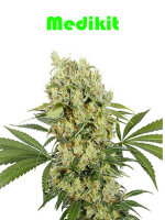 Buddha Seeds - Medikit Feminised Cannabis Seeds