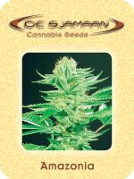 De Sjamaan - Amazonia 5 Regular Cannabis Seeds