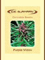 De Sjamaan - Purple Widow 5 Regular Cannabis Seeds