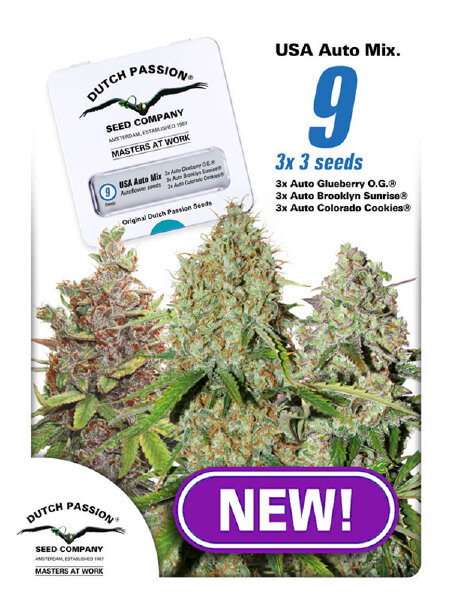 Dutch Passion - USA Autoflower Mix Feminised Autoflowering Cannabis Seeds