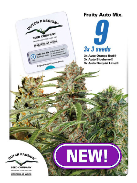 Dutch Passion - Fruity Auto Mix Feminised Autoflowering Cannabis Seeds
