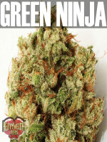 Heavyweight Seeds - Green Ninja Feminised Cannabis Seeds