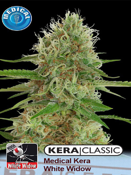Kera Classic - Medical White Widow Feminised Cannabis Seeds