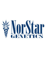 NorStar Genetics - Colombian Thunder Funk Regular Cannabis Seeds