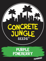 Concrete Jungle - Purple Pineberry - Feminised Cannabis Seeds