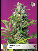 Sweet Seeds - Gorilla Girl Feminised Cannabis Seeds