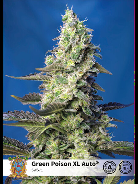 Sweet Seeds - Green Poison XL Auto Feminised Autoflowering Cannabis Seeds
