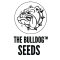 Bulldog Cannabis Seeds