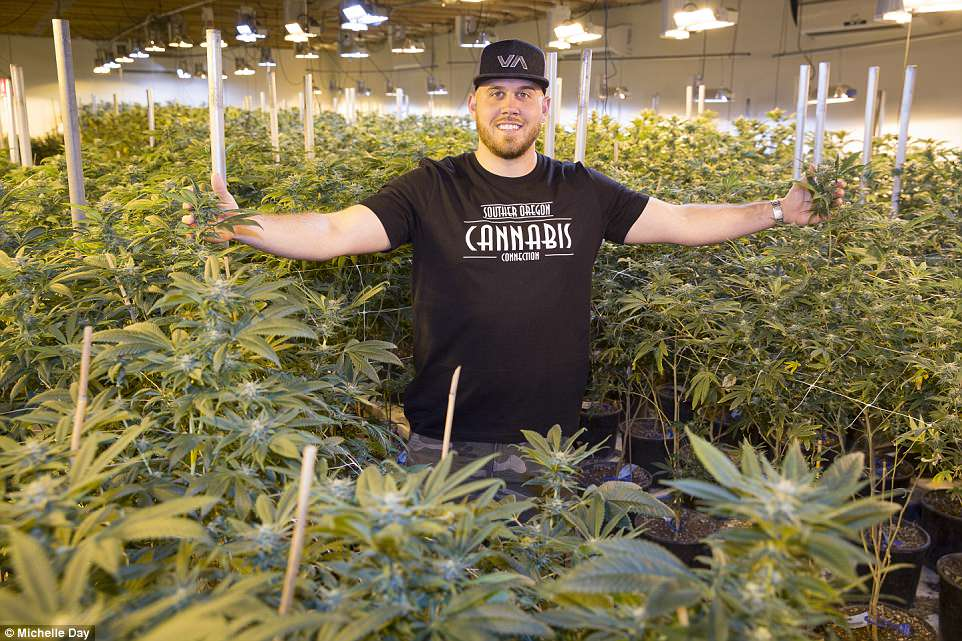 Royalty Welcomes Cannabis Farmer Into Family