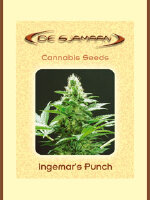 De Sjamaan - Ingemar's Punch 5 Regular Cannabis Seeds