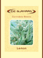 De Sjamaan - Lemon 5 Regular Cannabis Seeds