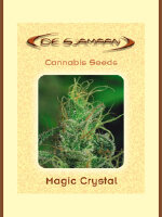 De Sjamaan - Magic Crystal 5 Regular Cannabis Seeds