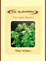 De Sjamaan - Thai Widow 5 Regular Cannabis Seeds