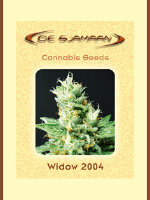 De Sjamaan - Widow 2004 5 Regular Cannabis Seeds