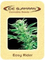 De Sjamaan - Easy Rider 5 Regular Cannabis Seeds
