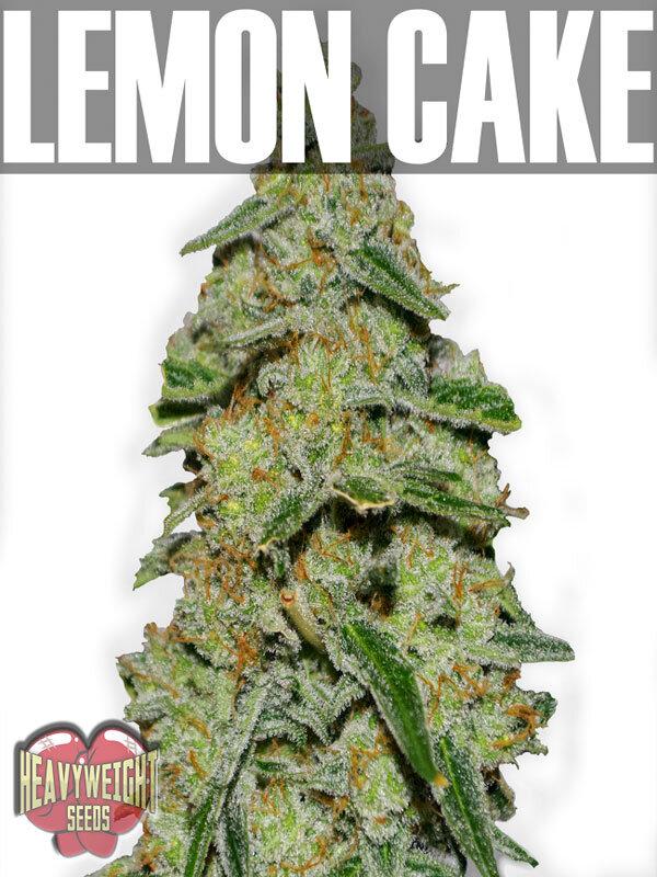Cake Doctor Lemon Cake
