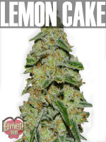 Heavyweight Seeds - Lemon Cake Feminised Cannabis Seeds