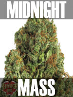 Heavyweight Seeds - Midnight Mass Feminised Cannabis Seeds