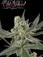 Ripper Seeds - Old School Feminised Cannabis Seeds