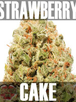 Heavyweight Seeds - Strawberry Cake Feminised Cannabis Seeds